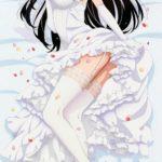 【抱き枕】アニメ・ゲーム系のエロい抱き枕カバーの画像 その136